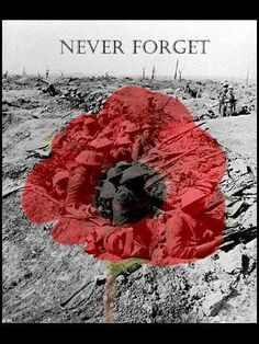 remembrance day events uk