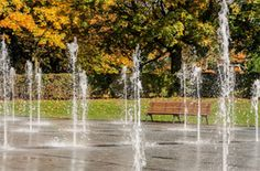 Stamford park
