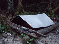 Post your Tarp Shelter - The Great Outdoors - Shroomery Message Board