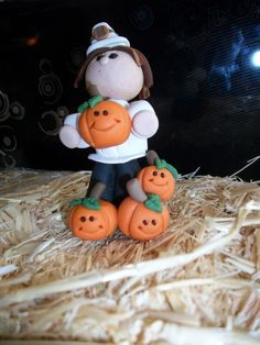 Pilgrim Boy with pumpkin patch