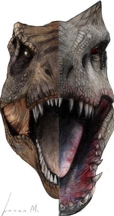 Two alpha predators- Tyrannosaurus Rex and the Idominous Rex. (I think I spelt…