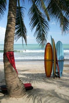 Surfing in Bali. I want to learn to surf. Beach House Style, Paradis Tropical, Places To Travel, Places To Visit, Bavaro Beach, Voyage Bali, Beach Please, Denpasar, I Love The Beach