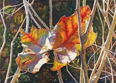 What a beautiful painting! -  Autumn Leaves Art Watercolor Print of an original by CathyHillegas, $20.00