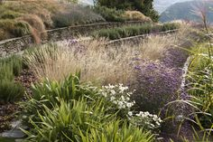 Hill Garden Queenstown New Zealand / Architect Suzanne Turley / Simon Devitt Photographer Garden Pavers, Hillside Garden, Meadow Garden, Garden On A Hill, Backyard Plants, Sloped Garden, Landscaping On A Hill, Luxury Landscaping, Landscaping Jobs