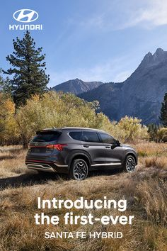 Get your fill of Mother Nature without worrying about fueling up in the first-ever SANTA FE Hybrid. Optional features shown. EPA fuel estimates: 2021 SANTA FE Hybrid Blue 34 Combined MPG and Hybrid SEL/Limited 32 Combined MPG. Hyundai Cars, Smart Key, Android Auto, New Adventures, Santa Fe, Mother Nature, Fill, Blue