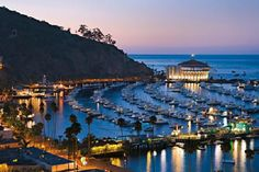 Catalina Island is so beautiful.