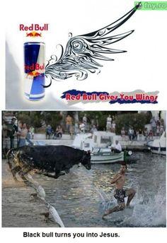 Red Bull vs Black Bull