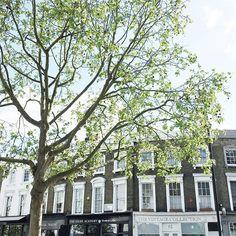 Domingo ensolarado em Londres! Vic Ceridono   Dia de Beauté