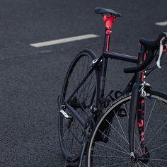 观看 @fieldcycles 发布的照片 · 151 次赞