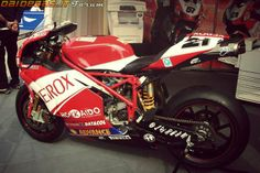 Ducati 999 RS SBK Troy Bayliss, http://www.daidegasforum.com/forum/foto-video/567992-le-superbike-raccolta-foto-gallery.html