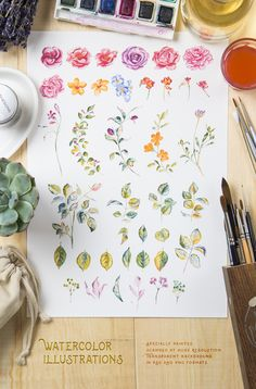 Floral Graphics Pack:                  Hand Crafted Floral Graphics Pack  With this file you will able to create awesome and unique greeting cards, logos and any type of floral designs. Both vector and watercolor illustrations included. Watercolor paintings scanned at extra high resolution and have transparent background. Vector illustrations also converted from hand made drawings. All of them curated specially, and look great together.