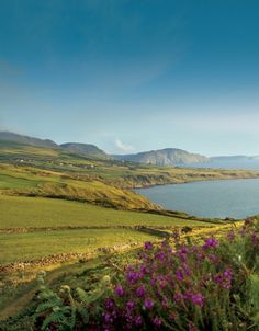 Great pic of Dalby from cover of Isle of Man Visitor Guide 2012