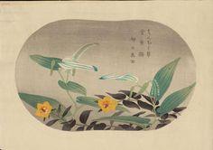 1930 - Takeji Asano - Saururus Chinensis and Hypericum Patulum