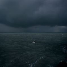 Waterscapes by Akos Major, beautiful.