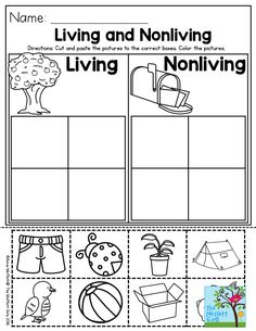 Living and Nonliving- a great Preschool activity to help students categorize living and nonliving things. Plus, there is so much more for you to check out in the NO PREP Packets for Preschool!