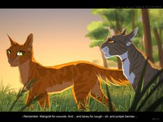 Leafpaw talking to squirrelpaw about herbs before she went on the great journey by Mizu-no-Akira on deviantART