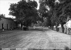 Guadalajara antigua. La Alameda (Hoy Parque Morelos).