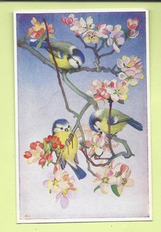 """The Medici Society by Heda Armour """" Bluetits and Apple Blossum """" PK246 