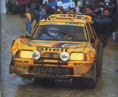 http://images.forum-auto.com/mesimages/689320/1987VatanenParisDakarb.jpg