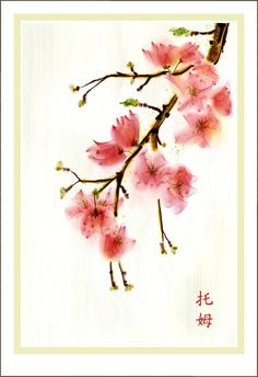 """Minus the Japanese symbols, I want this Japanese Cherry Blosson tattooed on my back like this, with the Japenese symbols for 'Family' next to it. """"No matter what, family always will have my back. Japanese Symbol, Japanese Art, Watercolor Flowers, Watercolor Paintings, Watercolor Tattoos, Watercolors, Japanese Watercolor, Blossom Tattoo, Japanese Flowers"""
