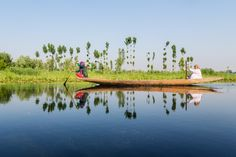 Women paddling a shikara on a lake in Kashmir Small Group Tours, Image Of The Day, Heaven On Earth, Funny Images, Photos, Pictures, Take That, Social Media, Website