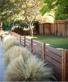 Grass along driveway edges