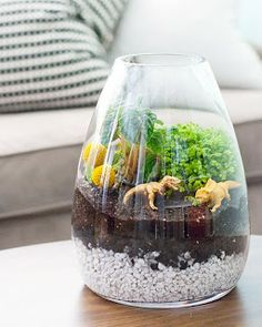 Dinosaur Terrarium - mine was ever cooler when I first made it but now most of the plants have died - need to replant I guess.