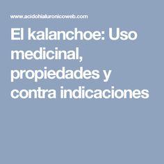 El kalanchoe: Uso medicinal, propiedades y contra indicaciones Cactus, Natural Medicine, Healthy Life, Natural Remedies, Health, Medicinal Plants, Cat, Succulents