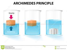 Illustration about Archimedes principle. The buoyant force acting on an object is equal to the weight of the displaced fluid. Illustration of fluids, fluid, archimedes - 37211092 Science Notes, Science Chemistry, Physical Science, Science Fair, High School Science, Science For Kids, Physician Assistant School, Advanced Physics, Force And Pressure