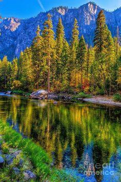 Lake mountains trees
