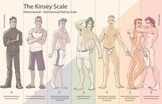 The Kinsey Scale - Visit us online at www.thegailygrind.com. Like us on www.facebook.com/thegailygrind #LGBT