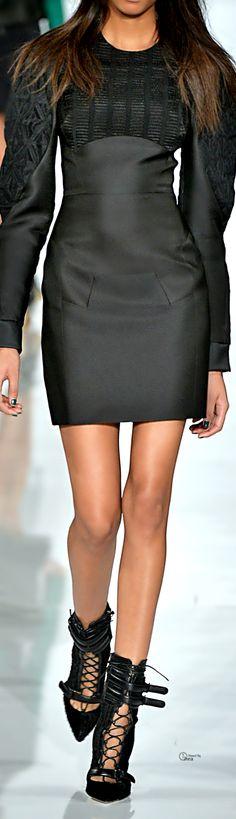 Antonio Berardi FW 2014 ● Silk Sheath Dress
