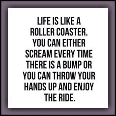 """""""Life is like a roller coaster. You can either scream every time there is a bump or you can throw your hands up and enjoy the ride."""""""