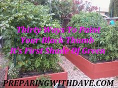 Thirty Ways To Paint Your Black Thumb It's First Shade Of Green » Preparing With Dave
