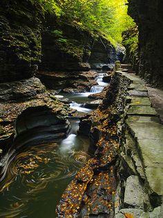 Glen State Park in New York, USA
