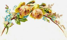 Free Flower Graphic: 2 Yellow Roses and Flowers Bouquet Border Image