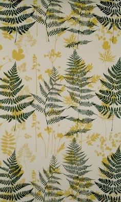 Ferns / Fabric