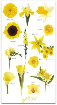 Yellow Wedding Flowers on Pinterest | Yellow Weddings, Wedding ...
