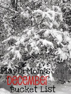 PlayDrMom's December Bucket List