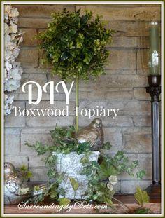 DIY Boxwood Topiary...surroundings by debi
