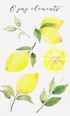 Lemon Painting, Lemon Watercolor, Easy Watercolor, Watercolor Cards, Abstract Watercolor, Watercolor Paintings, Oil Paintings, Lemon Clipart, Fruit Clipart