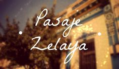 Pasaje Zelaya. Abasto, Buenos Aires
