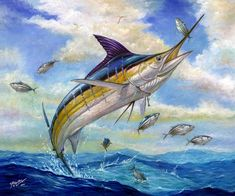 The Blue Marlin Leaping To Eat  by Terry Fox at fineartamerica.com