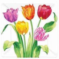 Tulips Party Supplies