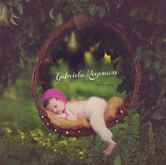 peaches & pears / outdoor newborn session