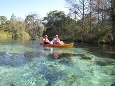 I miss being able to kayak down the Weeki Wachee River