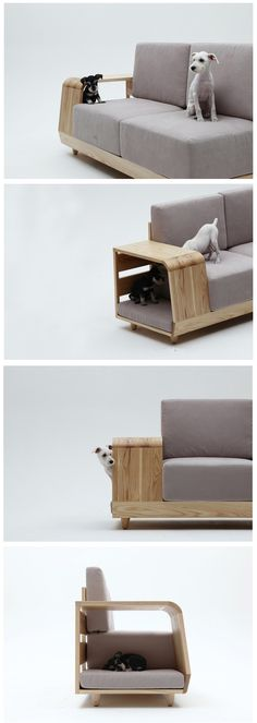 The dog house sofa by designer Seungji Mun was designed to express the idea that lifestyle is becoming increasingly shared with pets, the furniture collection becomes a tool for interacting between humans and animals.
