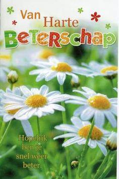 Van Harte beterschap!  Vrolijke beterschapskaart met witte weidebloemen