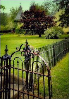 Garden gate walking through the lovely village of Washington, Virginia....