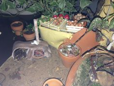 Hobbit house-cob stove